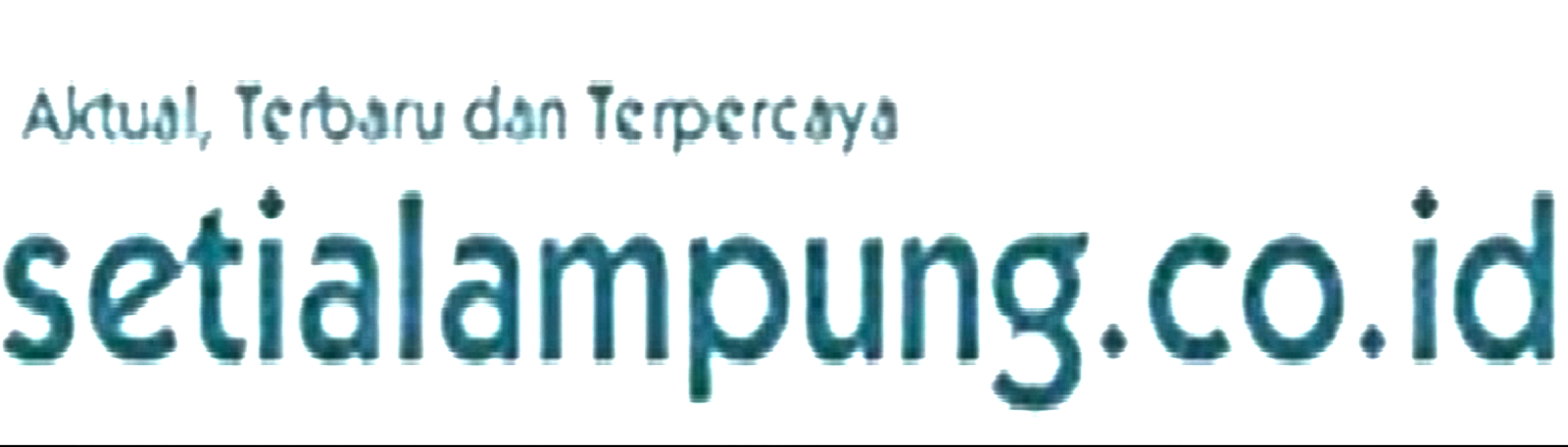 setialampung.co.id