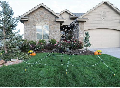 webbed house