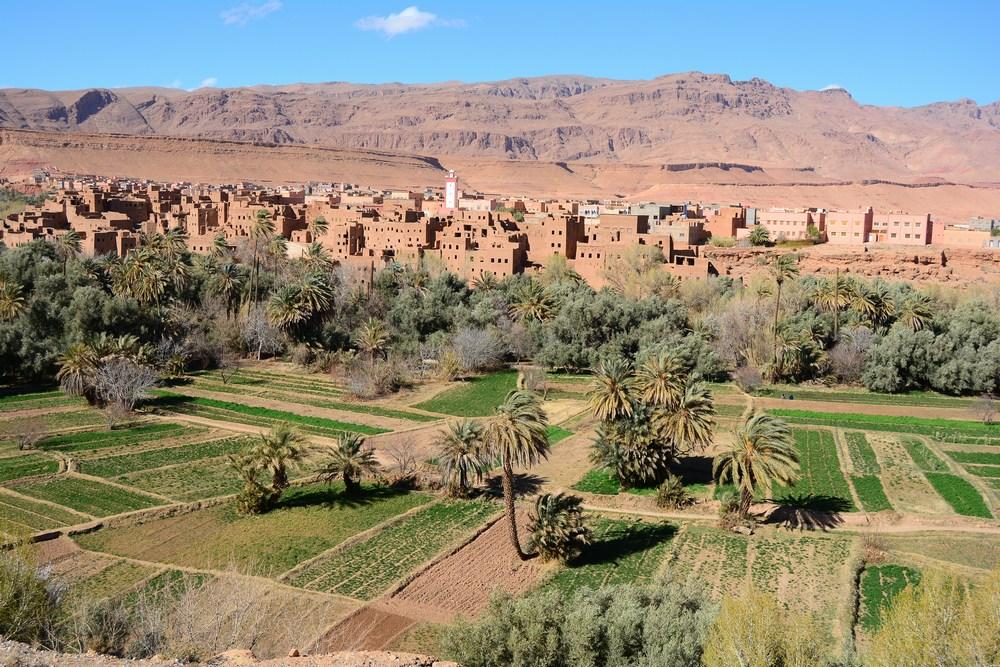 magnifiques paysages de la vallée de Tineghir