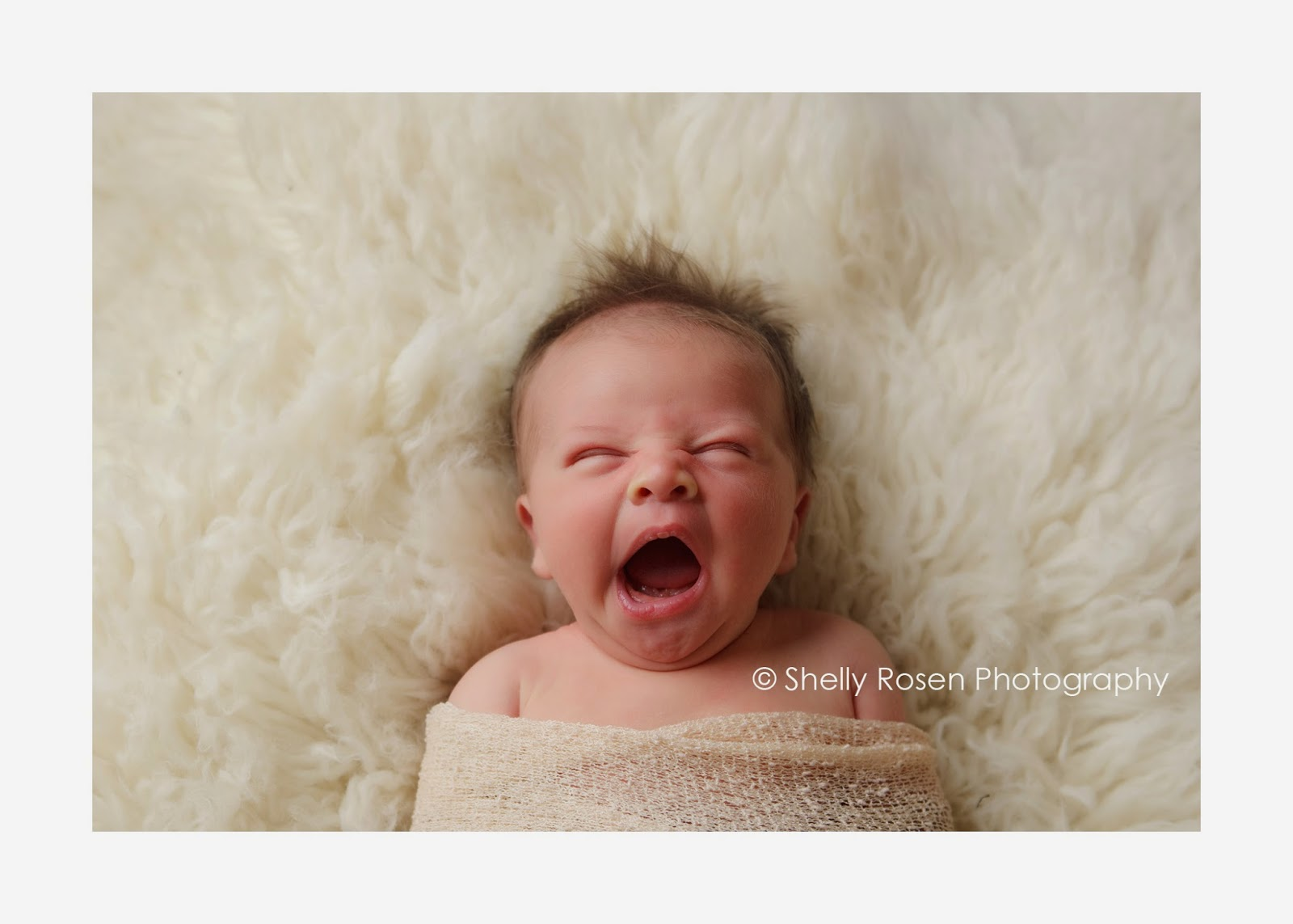 sweet newborn mid yawn shelly rosen photography