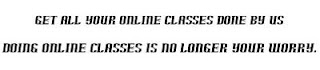 we will do your online classes and assignments