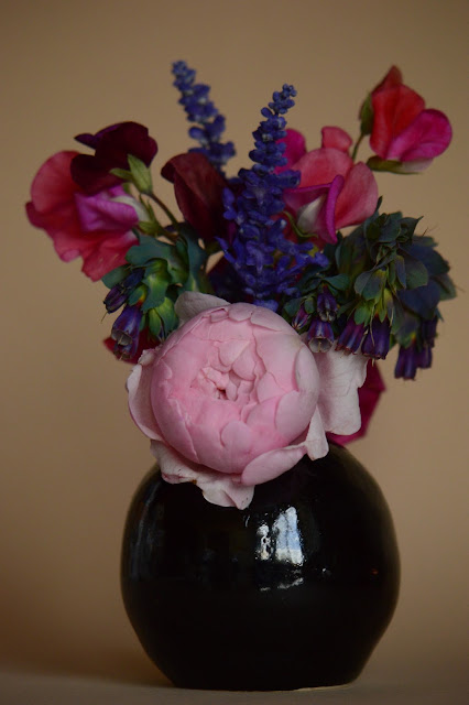 monday vase meme, sweet peas, cerinthe, salvia, small sunny garden, desert garden, arizona garden, amy myers, rose, the alnwick rose