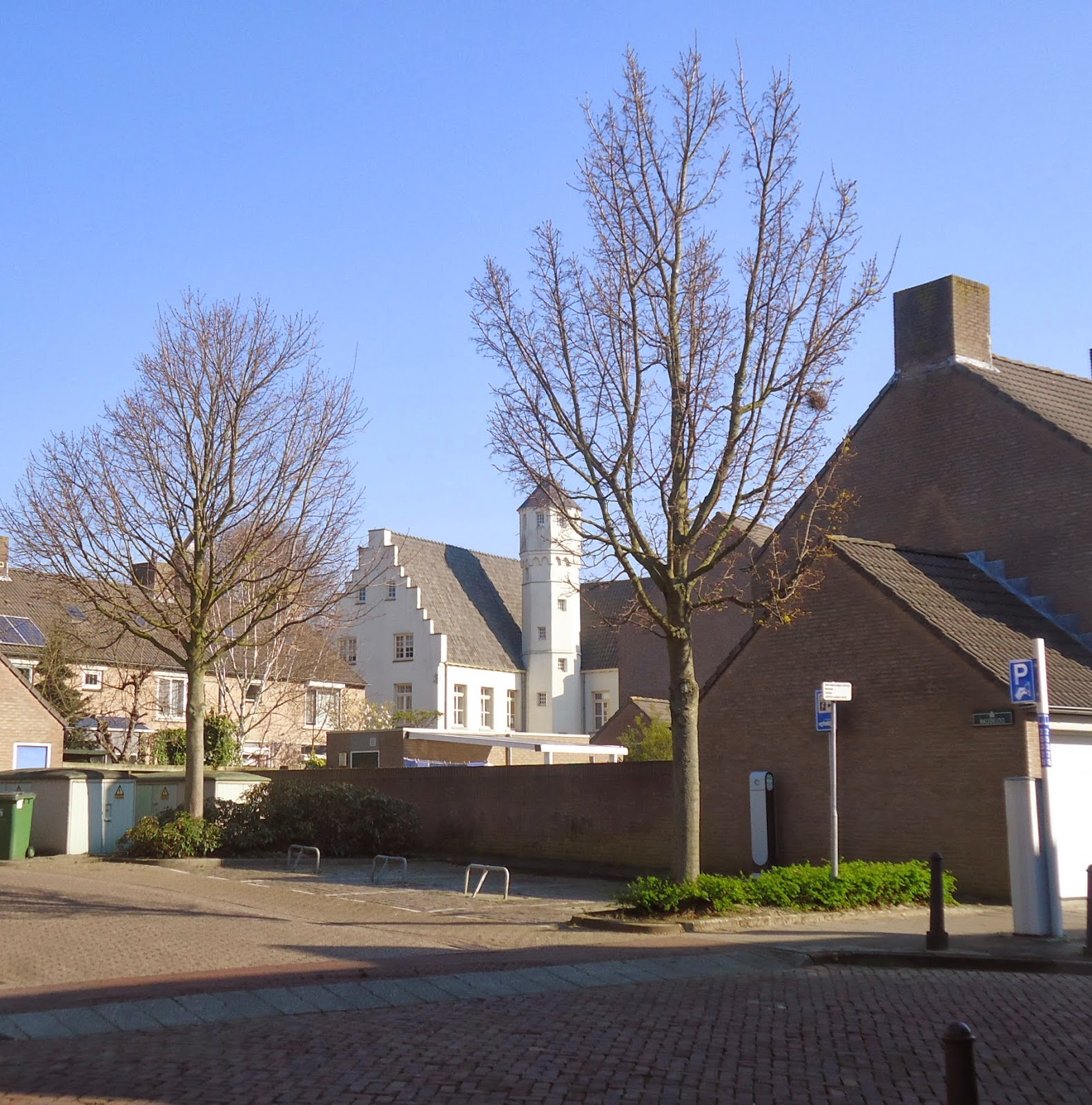 Travel Trees History Hulst The Netherlands