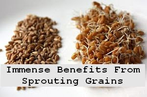 https://foreverhealthy.blogspot.com/2012/04/immense-health-benefits-of-sprouting.html#more