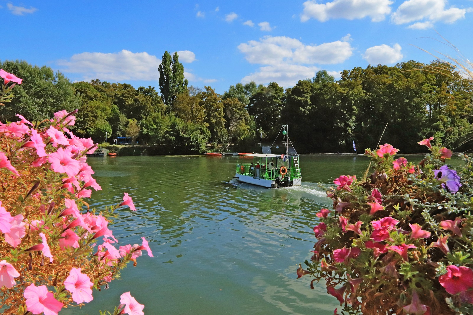 Fleurs, fleuve, arbres et bateau