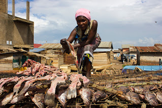 Woman cooking fish in Ghana