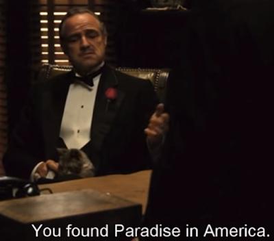 Dans le Parrain de Coppola, Vito Corleone siège sur un trône avec son chat
