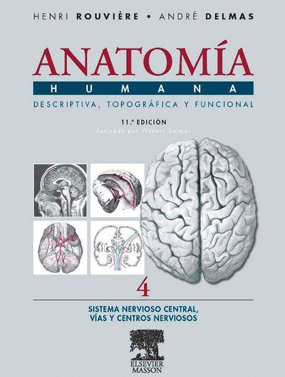 anatomia de rouviere tomo 3 pdf descargar gratis