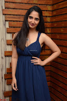 Radhika Mehrotra in a Deep neck Sleeveless Blue Dress at Mirchi Music Awards South 2017 ~  Exclusive Celebrities Galleries 061.jpg