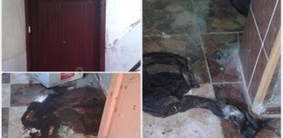 مقتل شاب على يد أخيه وتقطيع جثته 7 أجزاء