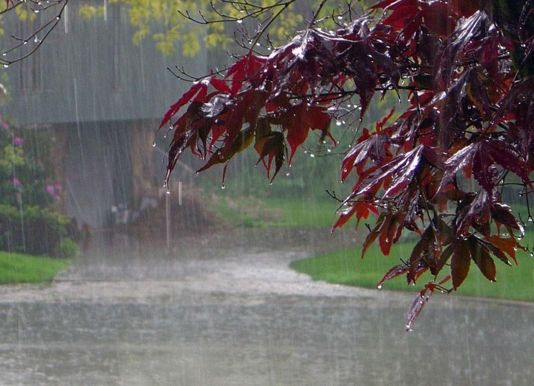 Şimşək çaxacaq, intensiv yağış yağacaq - PROQNOZ