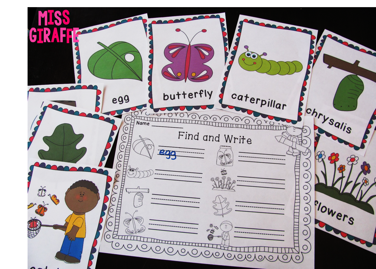 Butterfly life cycle center where kids look at the picture and write the word - you can put them around the room for kids to find and write!