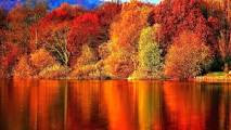 autumn photos wallpapers free download