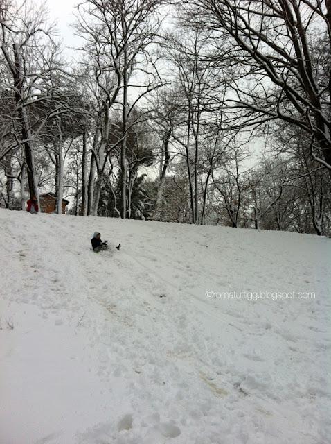 Snow in Rome, 2012