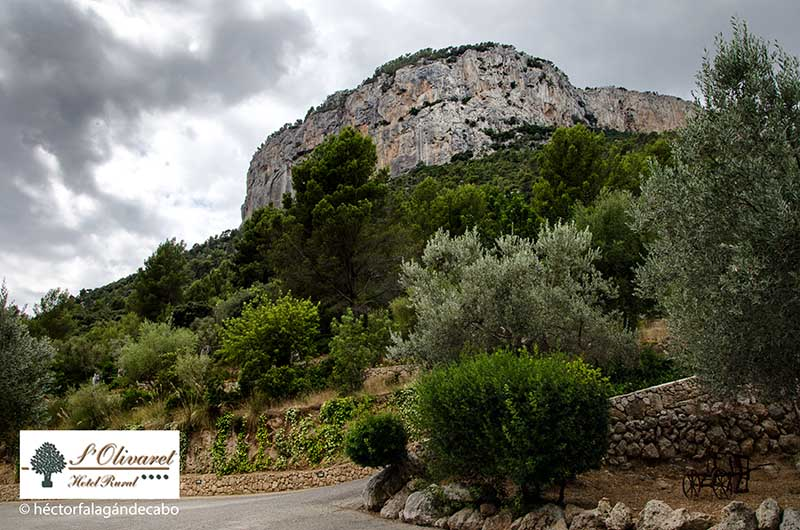 S´OLIVARET Hotel rural en Sierra de Tramuntana, Mallorca. Fotografías por Héctor Falagán De Cabo | hfilms & photography.
