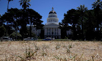 The lawn in front of the California State Capitol is seen dead on June 18, 2014 in Sacramento, California. Due to the California drought - intensified by global warming - the grounds at the California State Capitol are under a reduced watering program and groundskeepers have let sections of the lawn die off in an effort to use less water. (Photograph Credit: Justin Sullivan/Getty Images) Click to Enlarge.