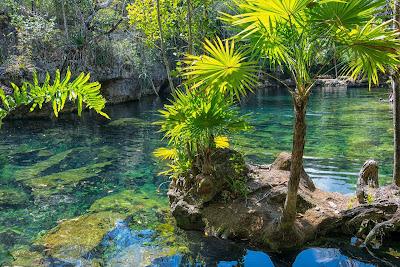 Lugares para visitar en xalapa