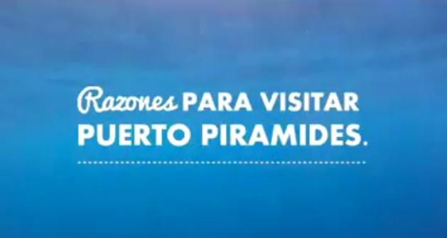 Razones para visitar Puerto Pirámides