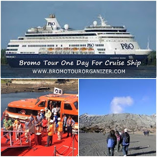 Bromo Tour One Day For Cruise Ship From Probolinggo Port