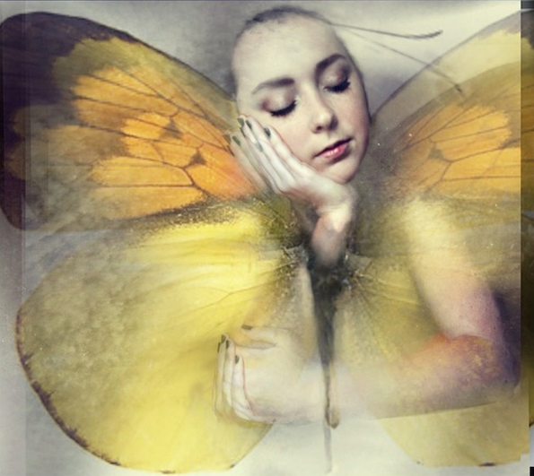 Give Me Wings © Molly Hodges