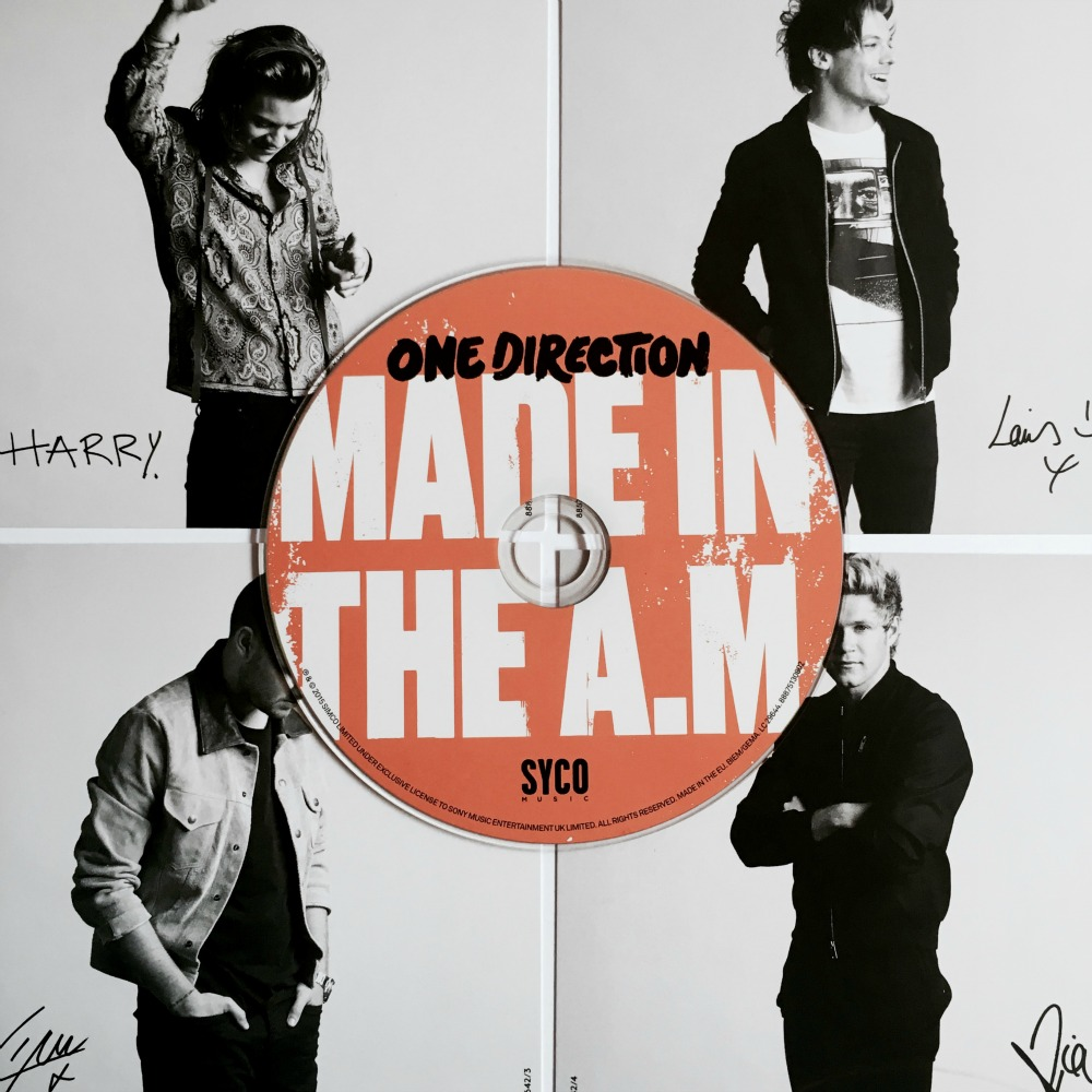 One Direction Perfect Made in the AM lyrics One Direction