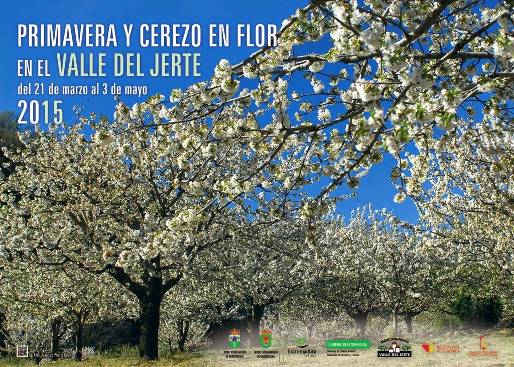 valle del jerte cerezos en flor