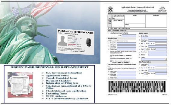 immigration expert 082913