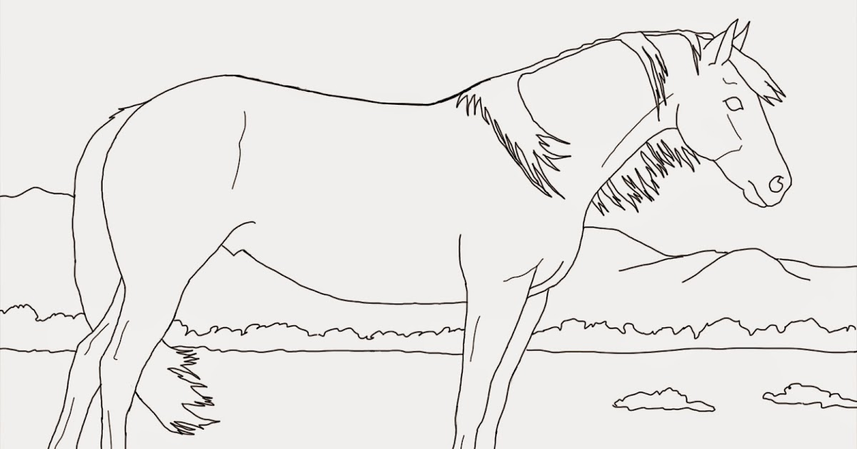 Pinto Horse Coloring Pages: Crista Forest's Animals & Art: Coloring Book Page