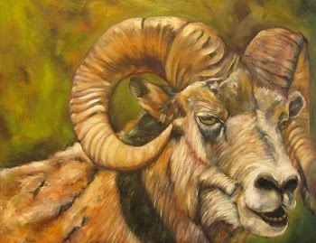 """Rocky Mountain Warrior"",  longhorn sheep/Ram"