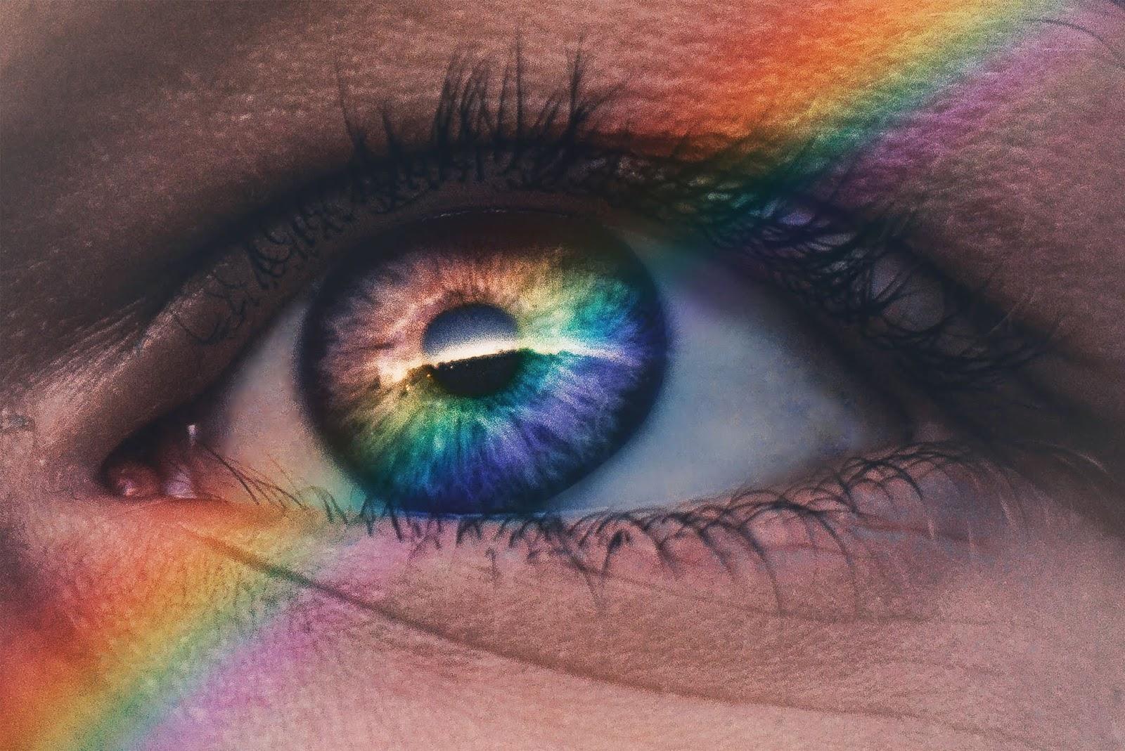 queer, ally, LGBT+, sojusznictwo, sojusznik, sojuszniczka, wsparcie, osoby nieheteronormatywne