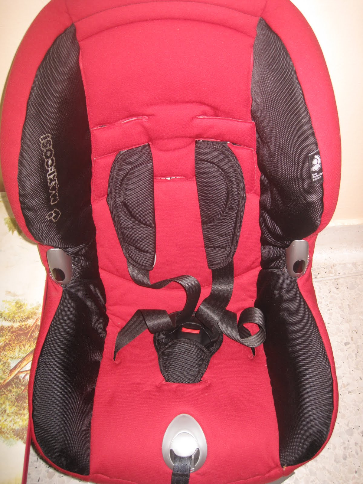 Rear Facing Car Seat Max Height Amy Sweety Store January 2012