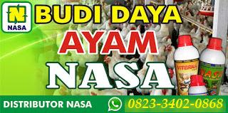 AGEN NASA DI Batik Nau Bengkulu Utara - TELF 082334020868