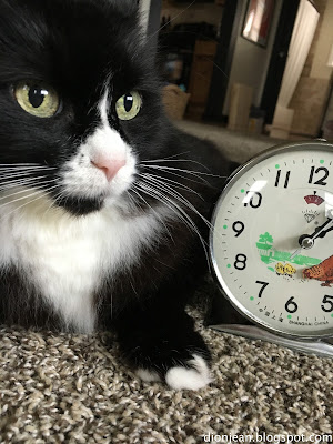 Maggie the cat in a selfie with a clock