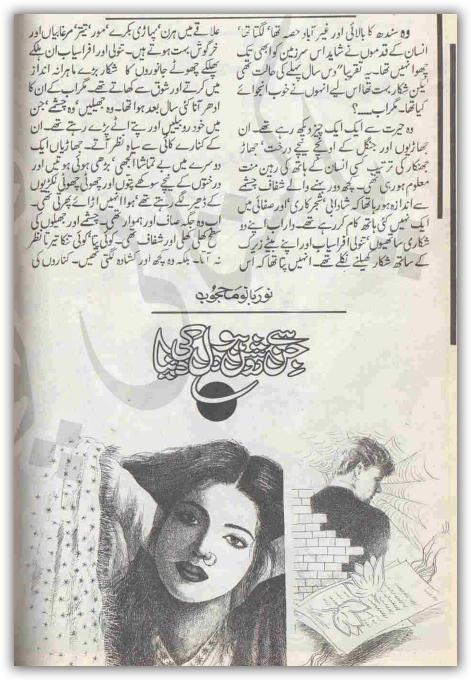 Jin se roshan ho dil ki dunia novel by Noor Bano Mahjoob