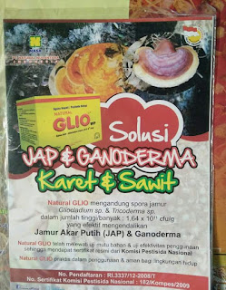 agen natural glio di sampit