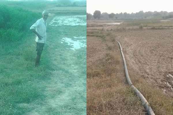 pratapgarh-up-kisan-have-no-irrigation-facility-neelgay-big-problem