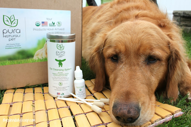pure naturals pet organic and chemical free ear cleansing system for dogs