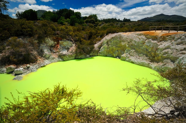 Lac vert Rotorua
