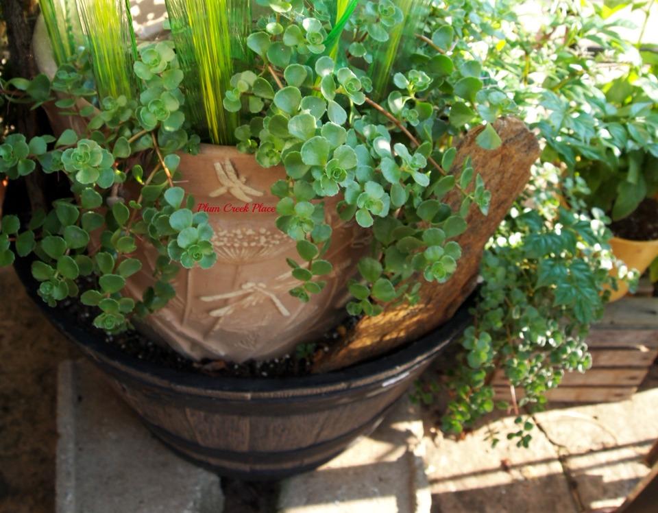 Plum Creek Place: Making a Fairy Garden out of a broken flower pot.
