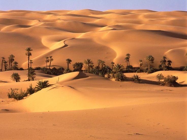 Subtropical Desert - Looking for a warm escape? Check out the beautiful desert oases of Libya.