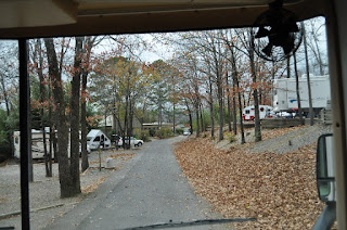 road in campground in the autumn