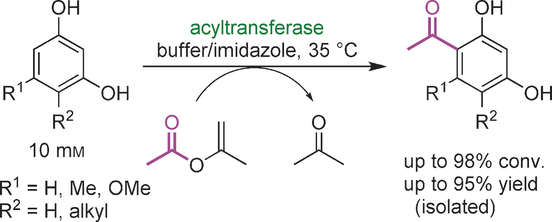 Biocatalytic Friedel–Crafts Acylation and Fries Reaction