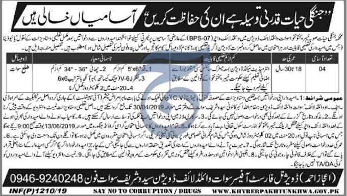 KPK Wildlife Department Jobs March 2019 Swat