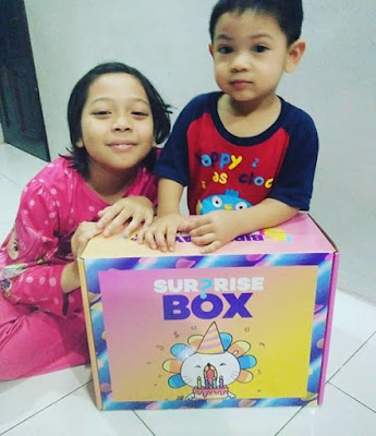 lazada surprise box