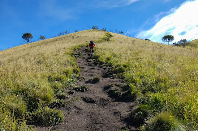 Gunung Merbabu Jalur Suwanting