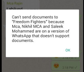 Old version of WhatsApp that doesn't support documents