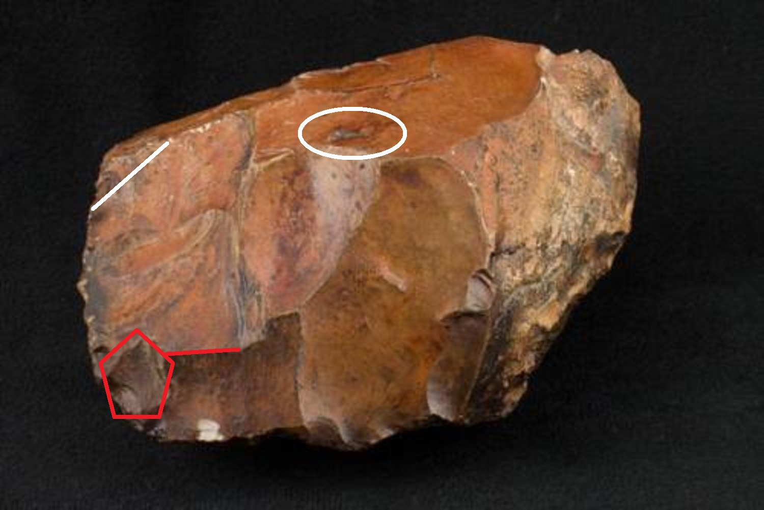 Archaeology of portable rock art polymorphic symbolism in an when i saw this photo i recognized the artifact followed a subtle and simple template for a feline head looking left here as seen in many other examples biocorpaavc Images