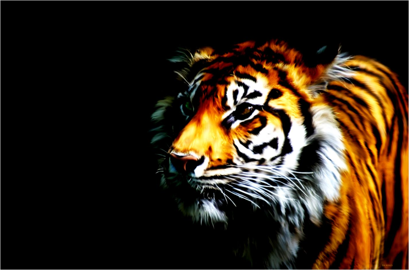 3d Art Tiger Wallpaper Dekstop Background Mega Wallpapers