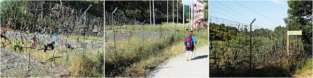 CAMINO DE SANTIAGO: O PEDROUZO-LAVACOLLA/VILAMAIOR. (CAMINO FRANCÉS)