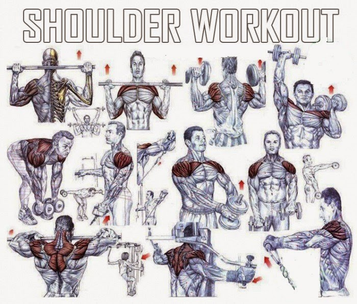 The Best Shoulder Exercises For Mass - all-bodybuilding.com